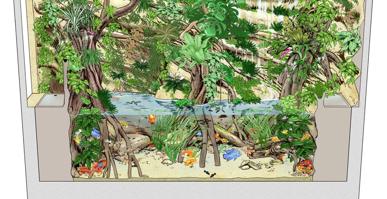 Dessin Aquaterrarium