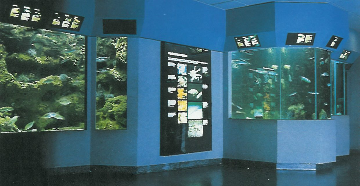 Gallerie aquariums