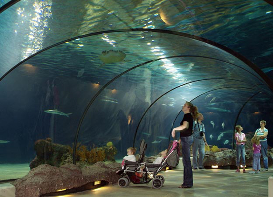 Transparent panels, Transparent panels for aquariums, pool portholes
