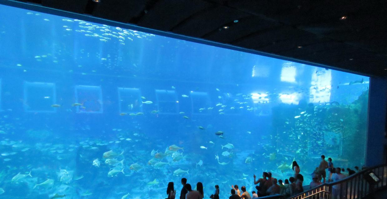 Transparent panels, Transparent panels for aquariums, pool portholes