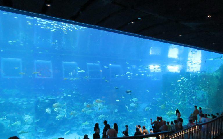 Théâtre sous-marin