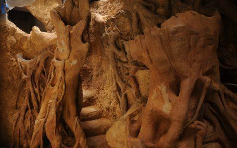 Décor en béton projeté sculpté